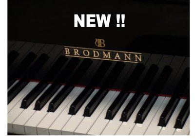 BRODMANN62222222!!!!!!!!!!!!!!!!!!!!!!!!!!NEWWWWWWWWWWWWWWW