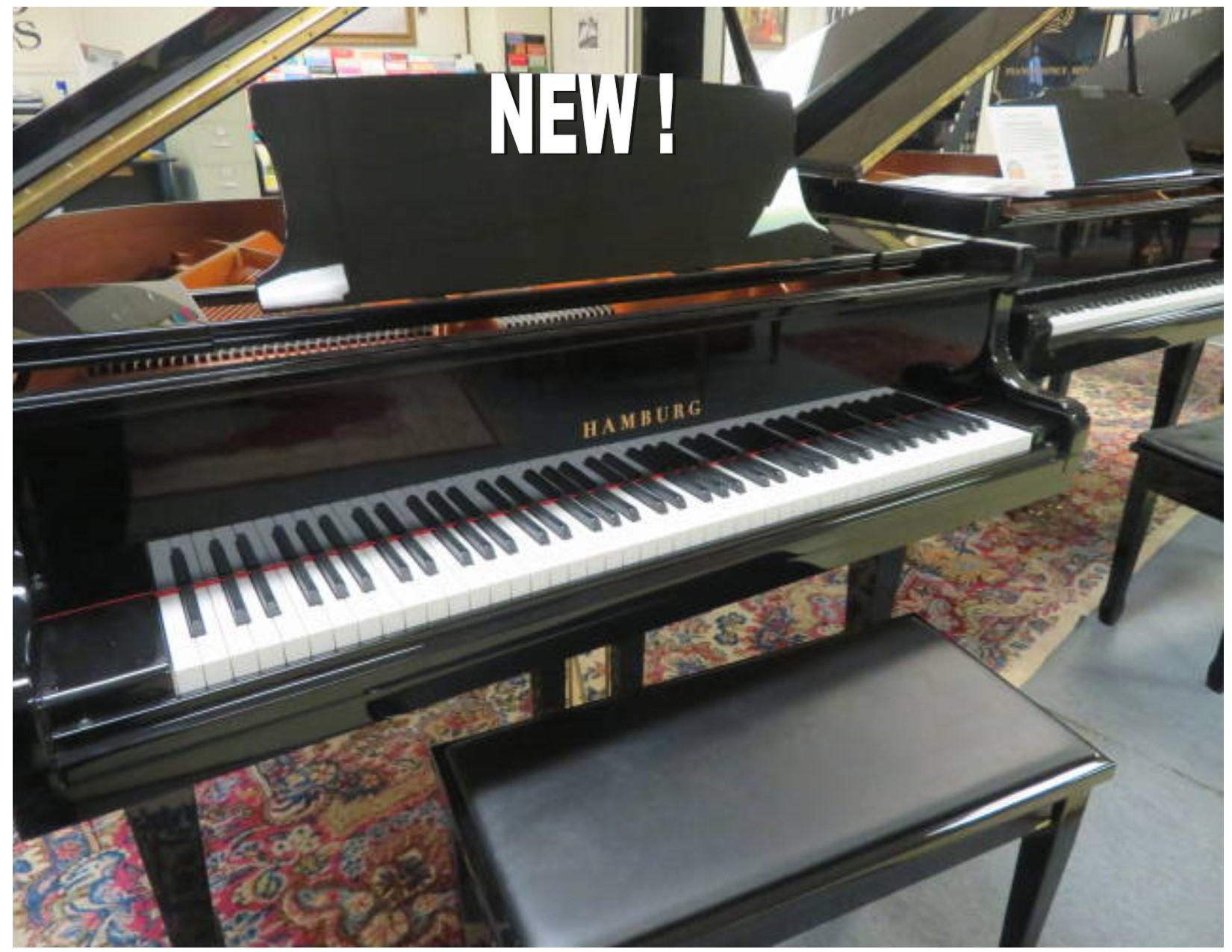 "12658-<br><font color=black><b>NEW HAMBURG</b></font> 5'0″ GRAND PIANO – EUROPEAN SOUND, BEST KEPT SECRET IN THE PIANO BUSINESS! <br><font color=blue><b>Click Picture for ""Live Video""</b></font>"