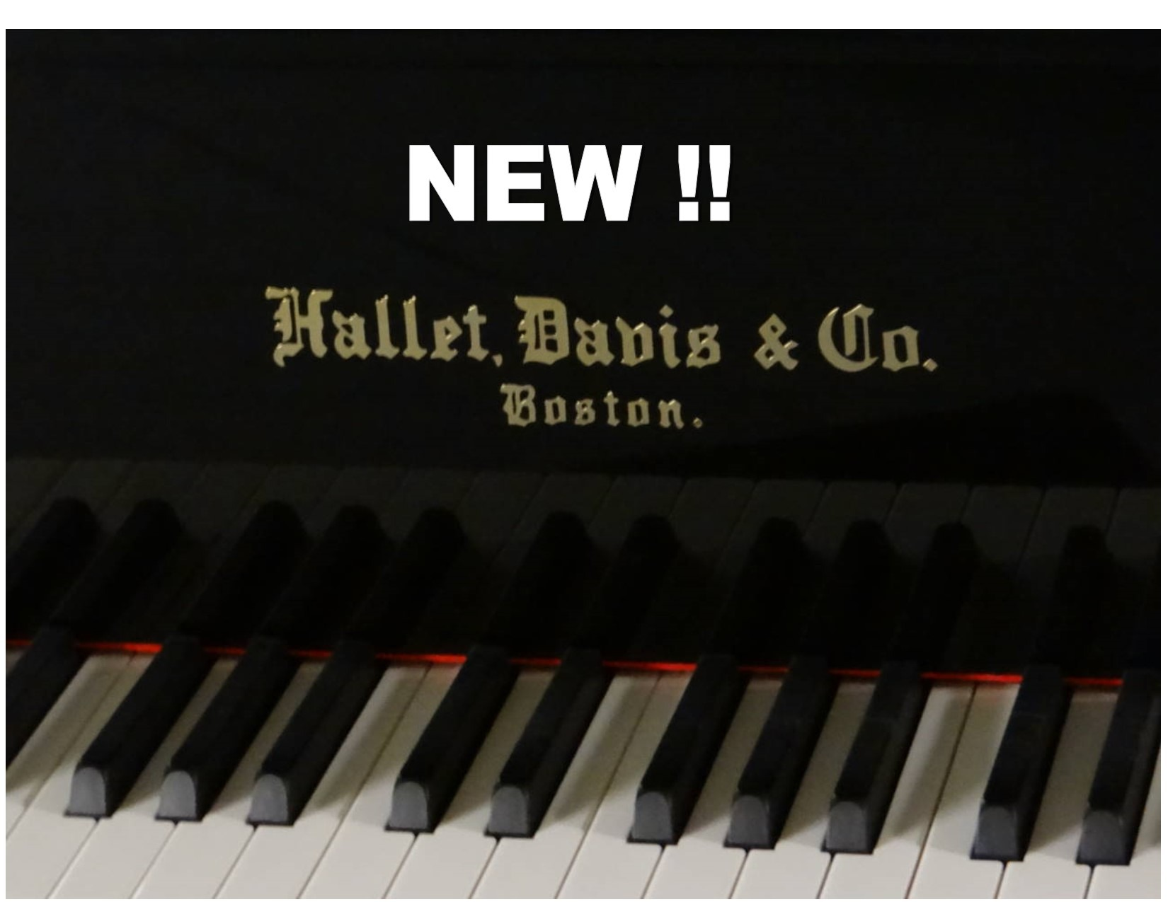 "12897-<br><font color=black><b>NEW HALLET DAVIS</b></font> 5'7″ Grand Piano ""German Wide Tail Design <br><font color=""blue""><b>Click Picture for ""Live Video""</b></font>"