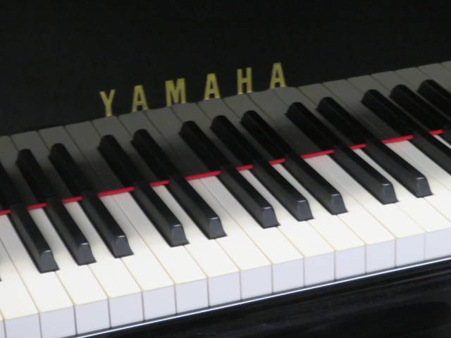 "12502-<br><font color=black><b>YAMAHA</b></font> 7'6″ Model C7  Professional Semi-Concert Grand ""Made for the Professional ""Magnificent"" <br><font color=""blue""><b>Click Picture for ""Live Video""</b></font>"