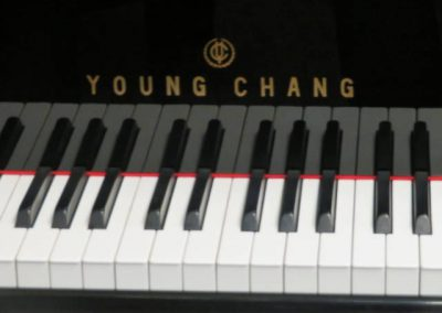 YOUNGCHAG59999LOGO