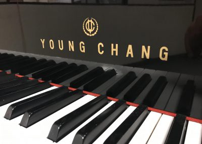 YCG-17
